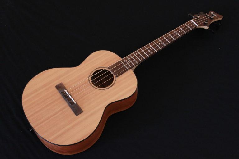Barrillon Acoustic 4C Face 1